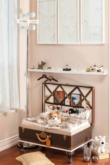 8 adorable designer spaces for dogs
